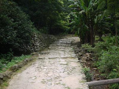 nianxian012.jpg